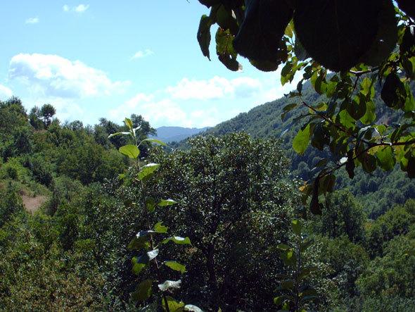 La montagne rhodopéenne