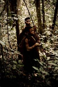 Les appeaux ou imitation des cris d'animaux par les chasseurs pygmées aka (Centrafrique)