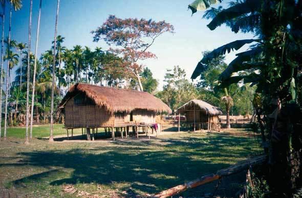 Maison sur pilotis (Bangora, haut Assam, vallée du Brahmapoutre)